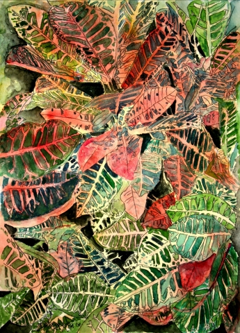 Croton Tropical Plant Painting Giclee Art Print On Canvas